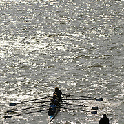 A crew of rowers training on the Potomac River with silvery light from a breeze and backlighting