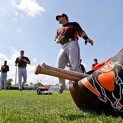 Mar 5, 2013; Dunedin, FL, USA; Baltimore Orioles players workout before a spring training game against the Toronto Blue Jays at Florida Auto Exchange Park. Mandatory Credit: Derick E. Hingle-USA TODAY Sports