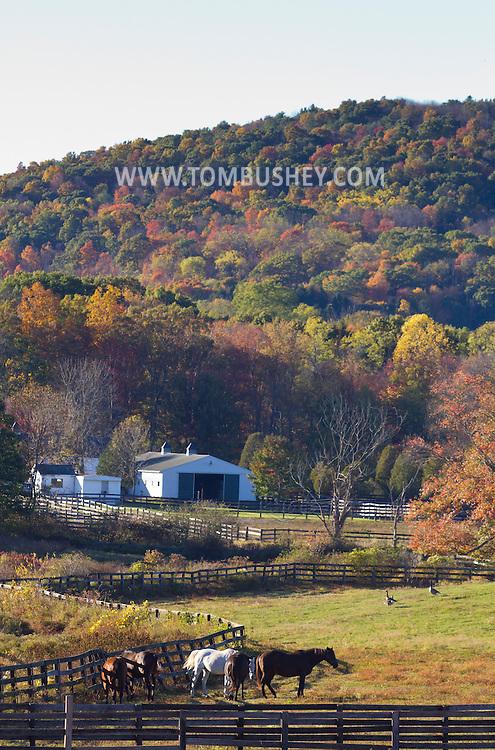 Mount Hope, New York  - Autumn scenes at Pierson's Farm on Oct. 12, 2014.