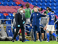 Football - 2019 / 2020 Championship - Play-off semi-final - 1st leg - Cardiff City vs Fulham<br /> <br /> Cardiff City manager Neil Harris consoles Lee Tomlin of Cardiff City as he leaves the field after Cardiff lose 2-0<br /> in a match played with no crowd due to Covid 19 coronavirus emergency regulations, in an almost empty ground, at the Cardiff City Stadium<br /> <br /> COLORSPORT/WINSTON BYNORTH