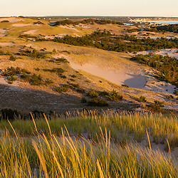 "Dunes and grasses in ""The Provincelands"" in the Cape Cod National Seashore, Provincetown, Massachusetts."