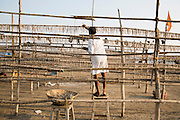 A local man hangs fish on long racks to dry them in the sun. This area is famous for its dried fish.