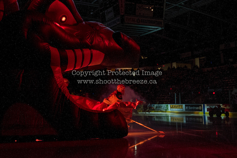 KELOWNA, CANADA - JANUARY 7: Brodan Salmond #31 of the Kelowna Rockets enters the ice against the Kamloops Blazers on January 7, 2017 at Prospera Place in Kelowna, British Columbia, Canada.  (Photo by Marissa Baecker/Shoot the Breeze)  *** Local Caption ***