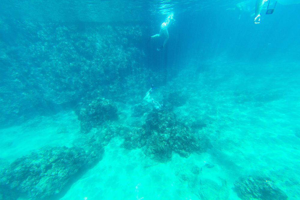 Snorkeling at Black Rock on Kaanapali Beach, Maui, Hawaii.  A woman collecting coral from the ocean floor, which is illegal.  Tourists largely ignore the law and due to budget restraits, the Department of Land and Natural Resources cannot effectively enforce the law.