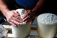 Italie. Sardaigne. Province de Cagliari. Artisan fromager Mariano Secci, Castello di <br /> Acquafredda a Siliqua. // Italy. Sardinia. Cagliari province. Cheese maker Mariano Secci at Castello di <br /> Acquafredda a Siliqua.
