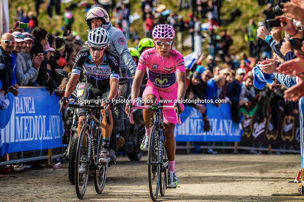 Two overall leaders Nairo Quintana (COL,MOV) and Rigoberto Uran Uran (COL,OPQ) at Giro d'Italia, Monte Zoncolan, Italy, 31th May 2014, Photo by Thomas van Bracht / PelotonPhotos.com