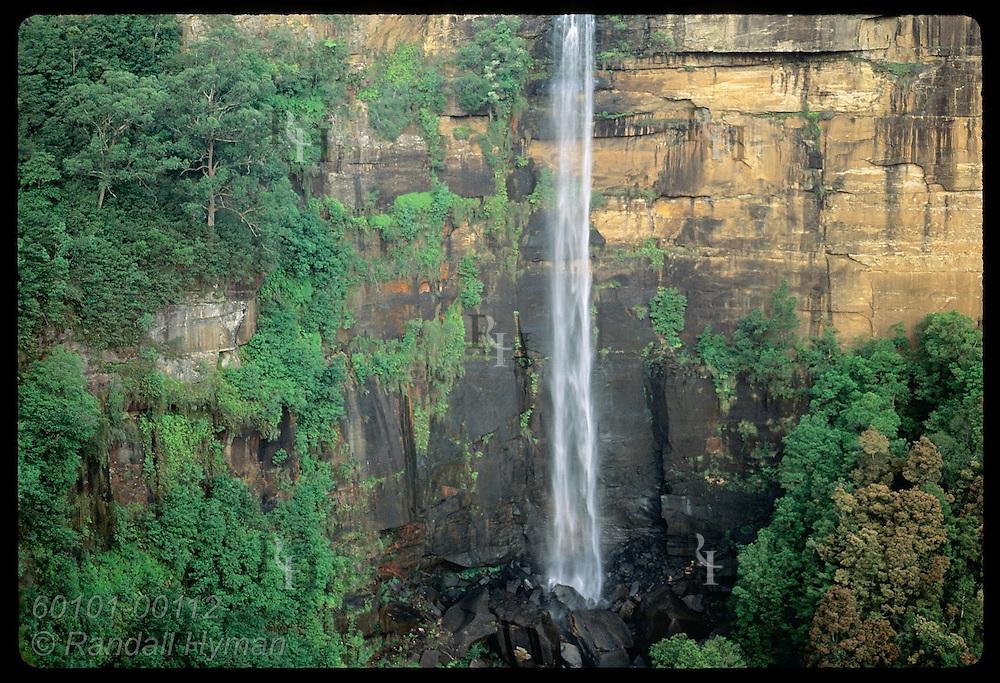 Fitzroy Falls plummets 81m over escarpment in Southern Highlands of Great Dividing Range; (h) NSW Australia