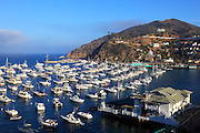 Aerial of Avalon Bay at Catalina Island