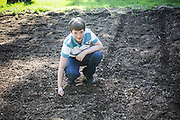Sam's turn to plant. Dropping beans into the rows. Two seeds together in case one of them doesn't sprout.