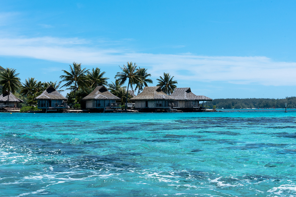 Thatched hut houses on a beautiful blue lagoon on the island of Moorea in the South Pacific.