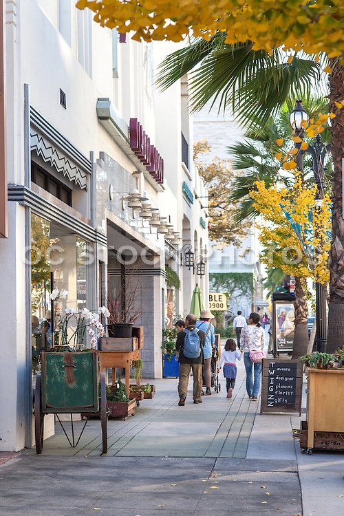 Shopping on Colorado Boulevard in Pasadena