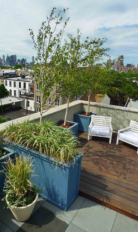 Union Street Roof Terrace With Best View 5 Jpg Outside Space Nyc