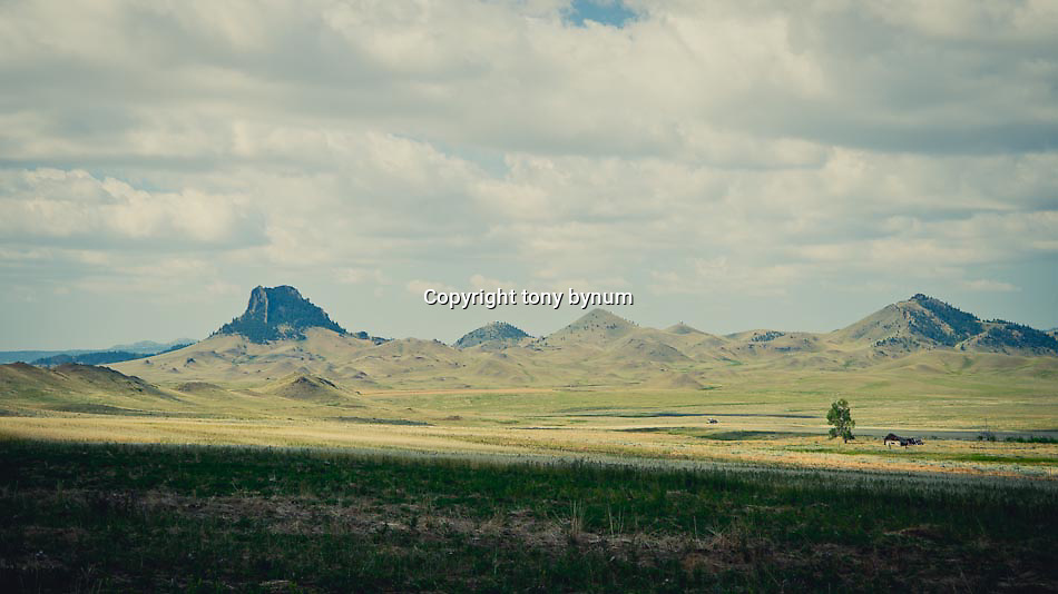 short grass prairie of eastern and central montana, bird tail butte under summer clouds conservation photography - montana wild prairie