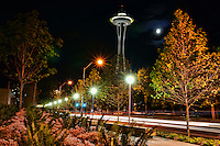 Space Needle & 5th Avenue, Queen Anne