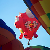 Through a forest of canvas and hot air, a pig takes flight! Follow your dreams - pigs can fly as can you!