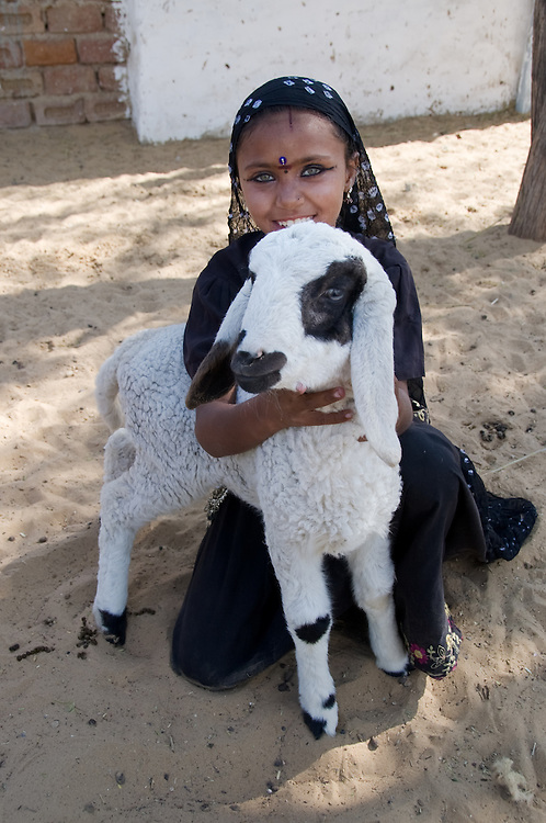 Rajasthani girl in the Thar desert, holding a sheep (India)