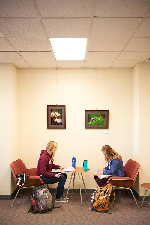 UWL UW-L UW-La Crosse University of Wisconsin-La Crosse; Activity; Studying; Buildings; Murphy Library; People; Student Students; Time/Weather; day; Winter; December; Type of Photography; Candid; Lifestyle; Woman Women