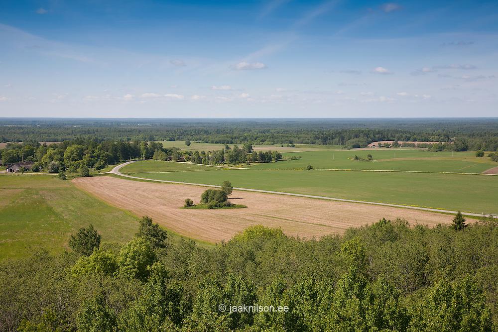 View from Emumägi Watchtower,  Estonia, Europe