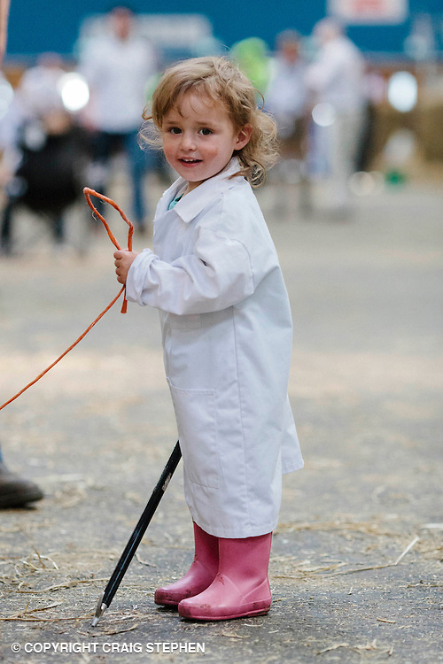 Royal Highland Show, 2014. 2 year old Lexi Pattison in the cattle hall at the show. PAYMENT TO CRAIG STEPHEN 07905 483532