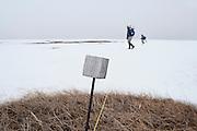 Waterfowl biologist, Black Brant; Branta bernicla nigricans, Tutakoke River research camp, Yukon Delta NWR, Alaska