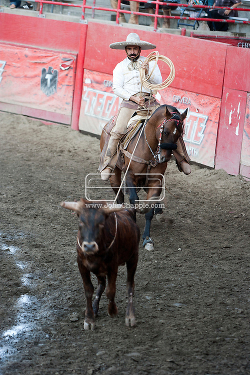 October 1st, 2011. Pico Rivera, California. Traditional charros (Mexican cowboys) compete in a Mexican Rodeo. The competition at the Pico Rivera Sports Arena is a display of horsemanship and lasso skills..PHOTO © JOHN CHAPPLE / www.johnchapple.com