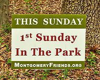 First Sunday in the Park. Rock Mill Preserve. Looking for Spring Wildflowers. Image taken with a Fuji X-T1 camera and 60 mm f/2.4 macro lens.
