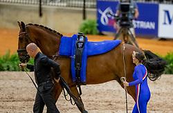 De Ridder Claire, NED, Pasca, Lunger Kristensen Lasse<br /> World Equestrian Games - Tryon 2018<br /> © Hippo Foto - Stefan Lafrenz<br /> 18/09/18