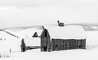 Barn in winter snow; Parlin, Gunnison Valley, Colorado