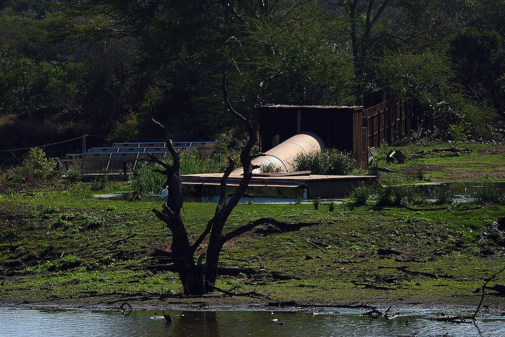 Zimanga Private Nature Reserve, KwaZulu Natal, South Africa
