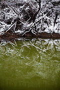 A water treatment pond, tinted green by ammonium in Bob White, West Virginia on Sunday, December 6, 2009.