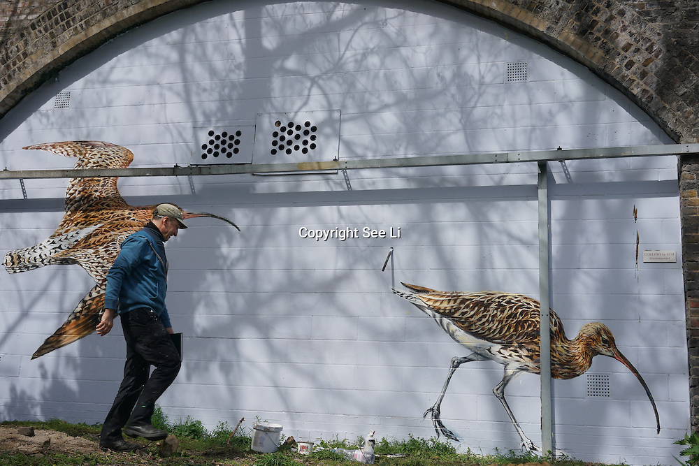 London,England,UK : 10th April 2016 : Amstreetart street artists paint a live Curlew take on 120 metre stretch of railway arches of 'Endangered 13' at Ackroyd Drive Sponsor by Tower Hamlets council in London. Photo by See Li