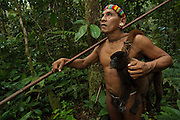 Huaorani Indian - Tage Kaiga hunting. Gabaro Community. Yasuni National Park.<br /> Amazon rainforest, ECUADOR.  South America.<br /> He used his blowgun to shoot this Woolly monkey.<br /> This Indian tribe were basically uncontacted until 1956 when missionaries from the Summer Institute of Linguistics made contact with them. However there are still some groups from the tribe that remain uncontacted.  They are known as the Tagaeri & Taromanani. Traditionally these Indians were very hostile and killed many people who tried to enter into their territory. Their territory is in the Yasuni National Park which is now also being exploited for oil.