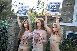 © Licensed to London News Pictures. 10/10/2016. London, UK. PETA activists demonstrate against the use of wool at the opening event of Wool Week. The demonstrators were nearly nude and covered in fake blood to protest against the alleged use of cruelty in the wool industry. Photo credit : Tom Nicholson/LNP