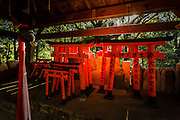 While walking through Fushimi Inari we can see red tori gates of all sizes. Here some small models of tori are standing in a small alcove near the main path.