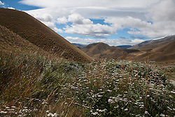 Mountainous landscape with hills and vegetation, near Cromwell, Central Otago, South Island, New Zealand