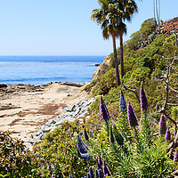 Photo of Orange County California coastline and Pacific Ocean in Laguna Beach at Heisler Park. Laguna Beach is a beach city in Southern California.