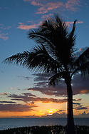 Sunset and palm trees over the Pacific Ocean, Paradise Cove, Kapolei, Oahu, Hawai
