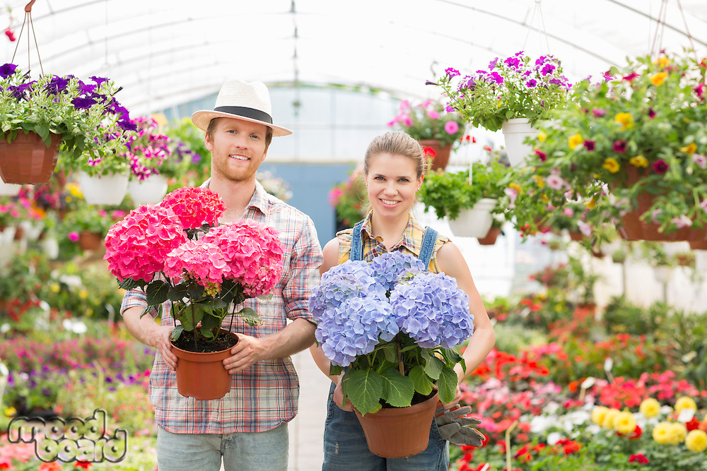 Portrait of smiling gardeners holding flower pots at greenhouse
