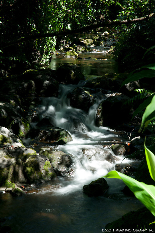 Stream with waterfall in Hilo, on the Big Island of Hawaii
