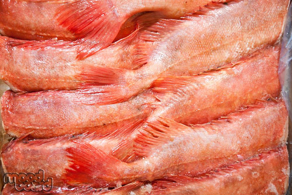 Full frame shot of freshly caught red fishes