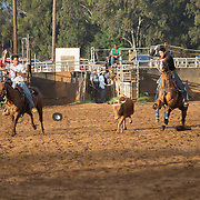 Fri Team Roping