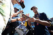 May 23, 2014: Monaco Grand Prix: Daniel Ricciardo (AUS), Red Bull-Renault