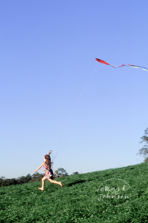Little girl flying a kite in a grassy field