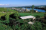 DEU, Germany, Rheingau, Ruedesheim at the river Rhine, view from the Niederwald monument to the city.....DEU, Deutschland, Rheingau, Ruedesheim am Rhein, Blick vom Niederwalddenkmal auf die Stadt.........