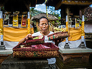 22 JULY 2016 - TENGANAN DUAH TUKAD, BALI, INDONESIA: A woman makes an offering in her family temple in the Tenganan Duah Tukad village on Bali before the Pandanus fights. The ritual Pandanus fights are dedicated to Hindu Lord Indra. Men engage in ritual combat with spiky pandanus leaves and rattan shields. They usually end up leaving bloody scratches on the combatants' backs. The young girls from the community wear their best outfits to watch the fights. The fights have been traced to traditional Balinese beliefs from the 14th century CE. The fights are annual events in the Balinese year, which is 210 days long, or about every seven months in the Gregorian calendar.    PHOTO BY JACK KURTZ
