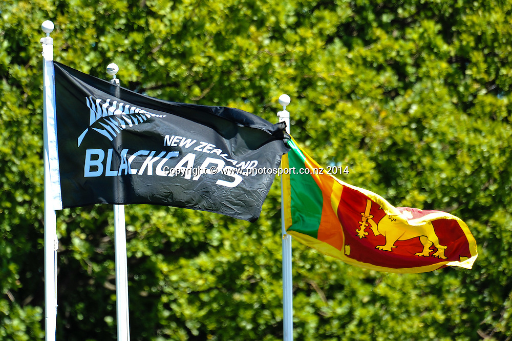 Team Flags in the 1st day of the cricket test match, NZ v Sri Lanka, Hagley Oval, 26 December 2014. Photo:John Davidson/www.photosport.co.nz