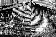 Shed at Jordan Farm near High Point, NC.  The image was processed to emulate Kodak Panatomic b&w film.