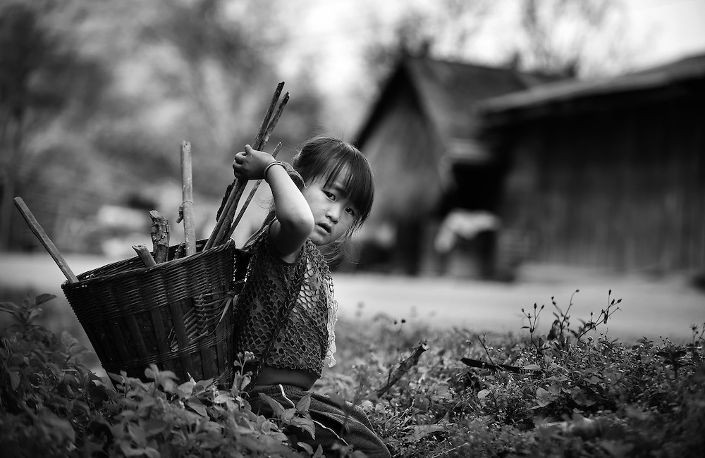 A Hmong girl collects firewood along the roadside near Luang Prabang, Laos.