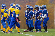 Salisbury Mills, New York  - Players from Washingtonville Gold, at left, and Middletown line up during an Orange County Youth Football League Division I playoff game at Lasser Field on Sunday, Nov. 3, 2013.