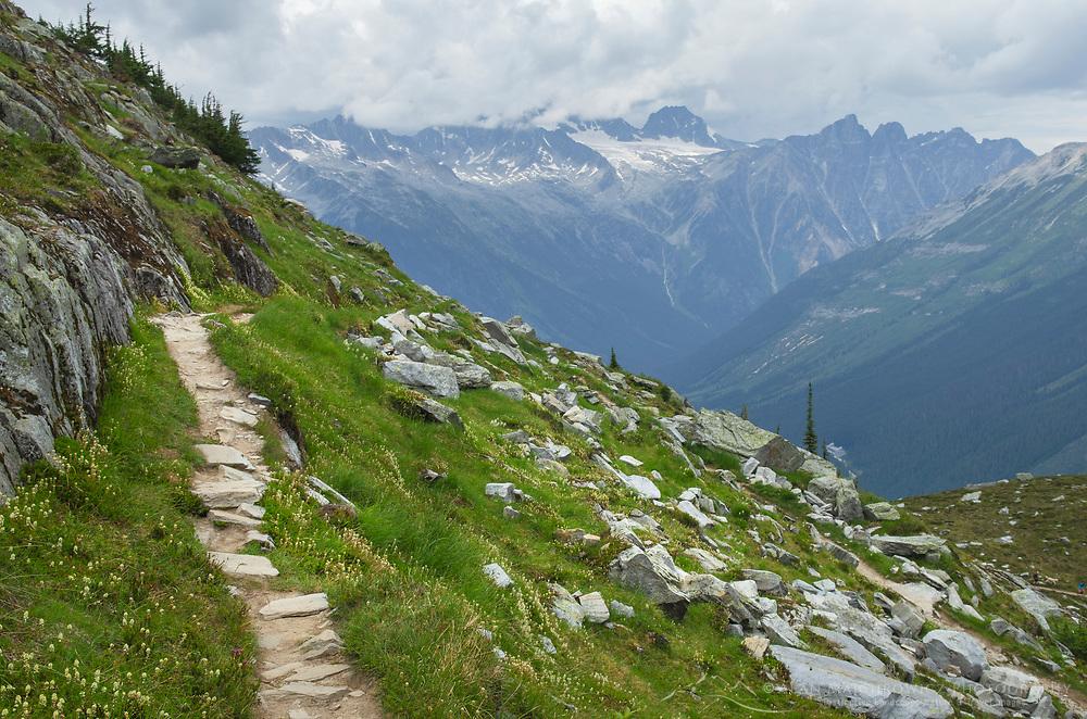 Abbott Ridge Trail. Selkirk Mountains Glacier National Park British Columbia